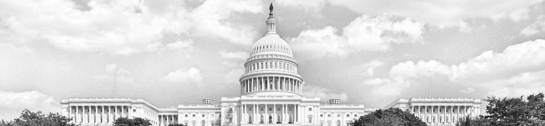 US_Capitol_bw4.jpg